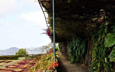 Jardins do Funchal