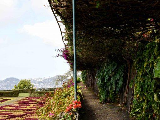 Gardens of Funchal