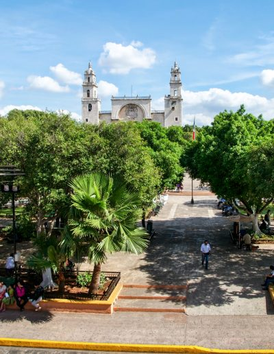 Catedral _DSC0036