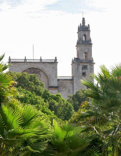 Catedral _DSC0067_2