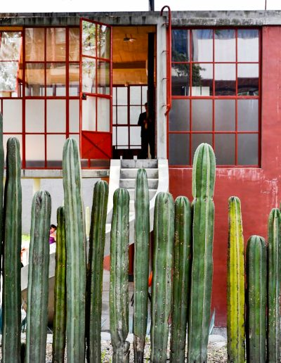 Estudio Frida y Diego_DSC0781