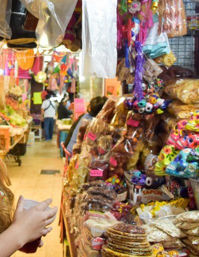 Mercado de Coyoacan DSC_7031