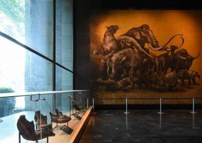Museu de Antropologia - Arqueologia DSC_7137