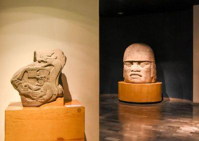 Museu de Antropologia - Arqueologia DSC_7224
